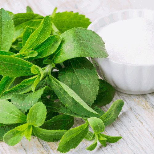 Stevia, natural sweeteners, sugar free sweeteners, stevia bad, is stevia bad for you, is stevia healthy